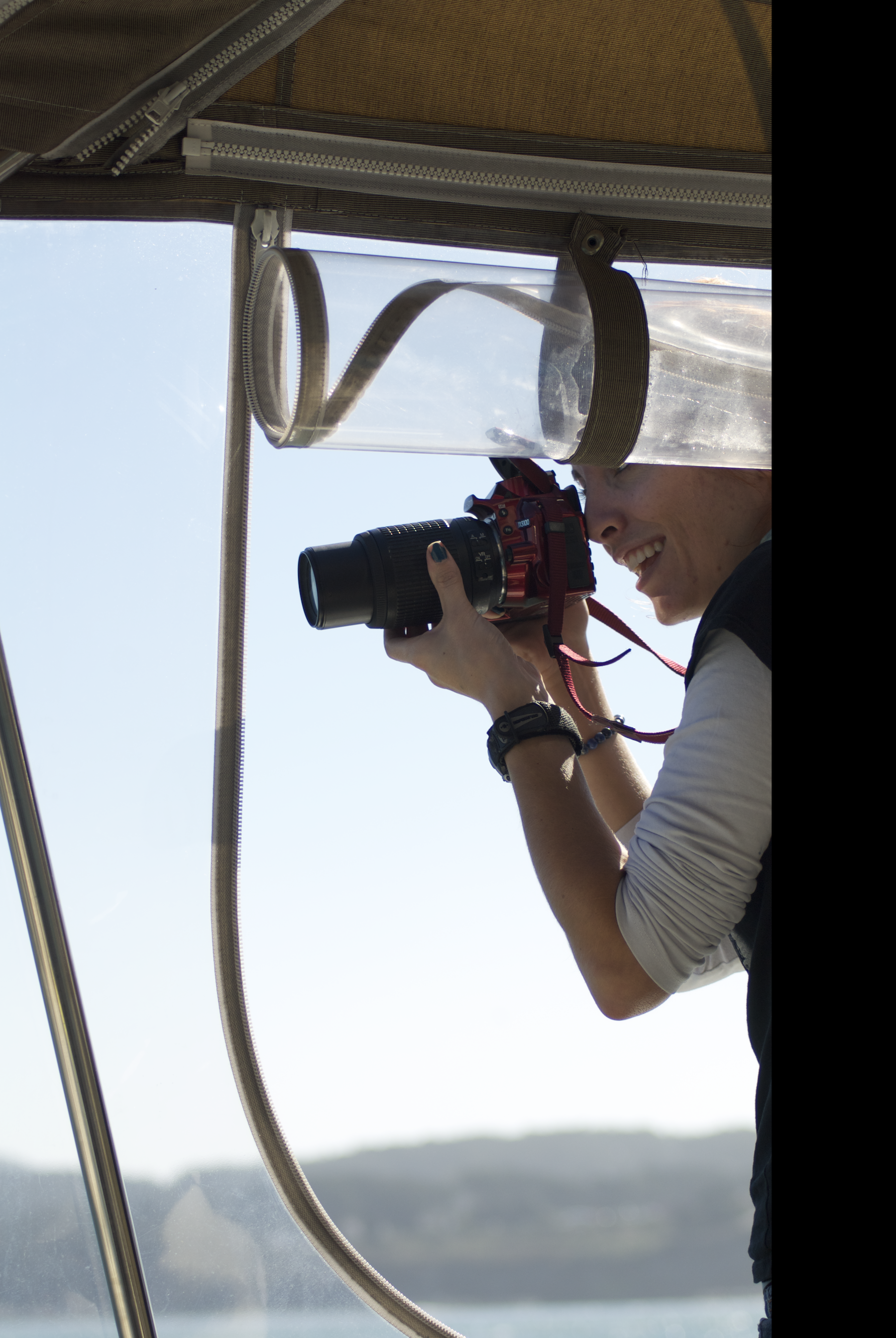 Photographing Cetaceans (photo credit:  A.K. Rosenberg)