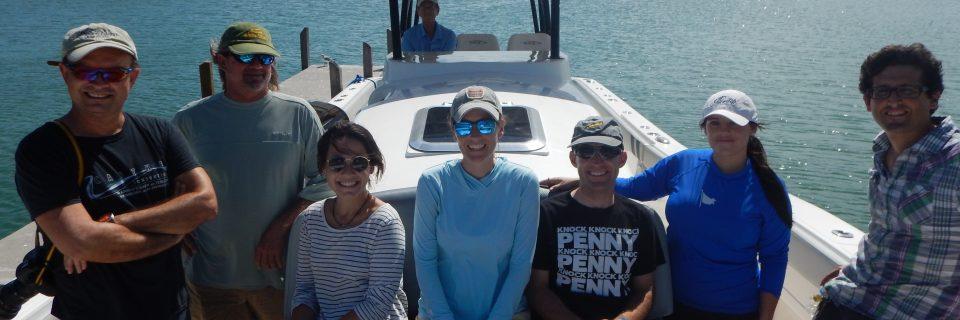 Insetta Boatworks